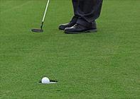 p_golf1